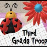 Third Grade Troop